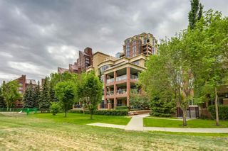 Photo 41: 308 600 PRINCETON Way SW in Calgary: Eau Claire Apartment for sale : MLS®# A1032382