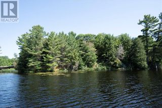 Photo 4: 17 PAULS BAY Road in McDougall: Vacant Land for sale : MLS®# 40146136
