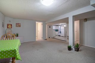 Photo 20: 503 35 Street NW in Calgary: Parkdale Detached for sale : MLS®# A1115340