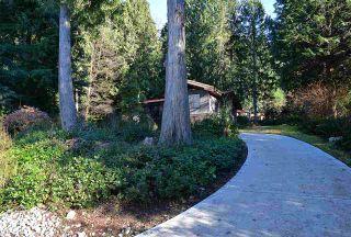 "Photo 17: 5653 CARMEL Place in Sechelt: Sechelt District House for sale in ""TUWANEK"" (Sunshine Coast)  : MLS®# R2135250"