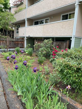 """Photo 31: 307 1006 CORNWALL Street in New Westminster: Uptown NW Condo for sale in """"KENWOOD COURT"""" : MLS®# R2615158"""