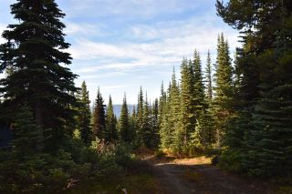 """Photo 3: 277 PRAIRIE Road in Smithers: Smithers - Rural House for sale in """"Prairie Cabin Colony"""" (Smithers And Area (Zone 54))  : MLS®# R2492758"""