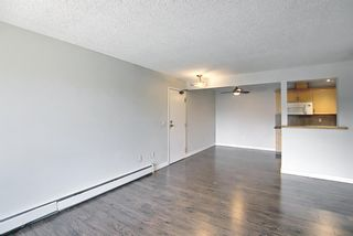 Photo 6: 4302 13045 6 Street SW in Calgary: Canyon Meadows Apartment for sale : MLS®# A1116316