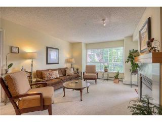 Photo 7: 213 25 RICHARD Place SW in CALGARY: Lincoln Park Condo for sale (Calgary)  : MLS®# C3631950