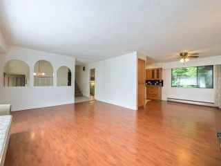 Photo 11: 3346 FINLEY Street in Port Coquitlam: Lincoln Park PQ House for sale : MLS®# R2565979