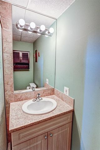 Photo 13: 19 Ogmoor Place SE in Calgary: Ogden Detached for sale : MLS®# A1028086