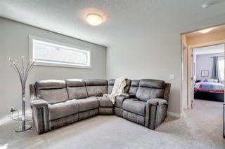 Photo 25: 17 CRANBROOK Close SE in Calgary: Cranston Detached for sale : MLS®# C4300618