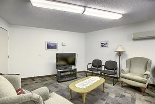 Photo 24: 3225 6818 Pinecliff Grove NE in Calgary: Pineridge Apartment for sale : MLS®# A1053438