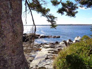 Photo 1: Lot SANDY POINT Road in Sandy Point: 407-Shelburne County Vacant Land for sale (South Shore)  : MLS®# 201509498