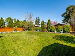 Photo 30: 4516 217A Street in Langley: Murrayville House for sale : MLS®# R2570732