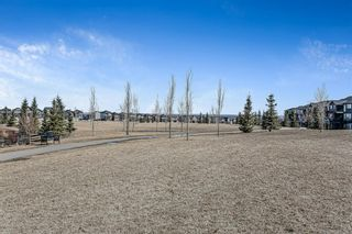 Photo 48: 179 Nolancrest Heights NW in Calgary: Nolan Hill Detached for sale : MLS®# A1083011