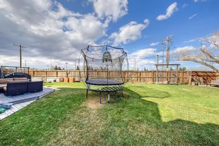 Photo 47: 420 Templeby Place NE in Calgary: Temple Detached for sale : MLS®# A1107183