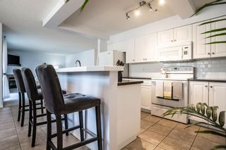 Photo 10: 201 3912 Stanley Road SW in Calgary: Parkhill Apartment for sale : MLS®# A1092035