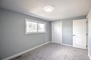 Photo 20: 3020 Dover Crescent SE in Calgary: Dover Semi Detached for sale : MLS®# A1147762