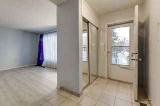 Photo 3: 33 AMBERLY Court in Edmonton: Zone 02 Townhouse for sale : MLS®# E4229833