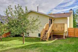 Photo 19: 59 Macewan Park Road NW in CALGARY: MacEwan Glen Residential Detached Single Family for sale (Calgary)  : MLS®# C3587816