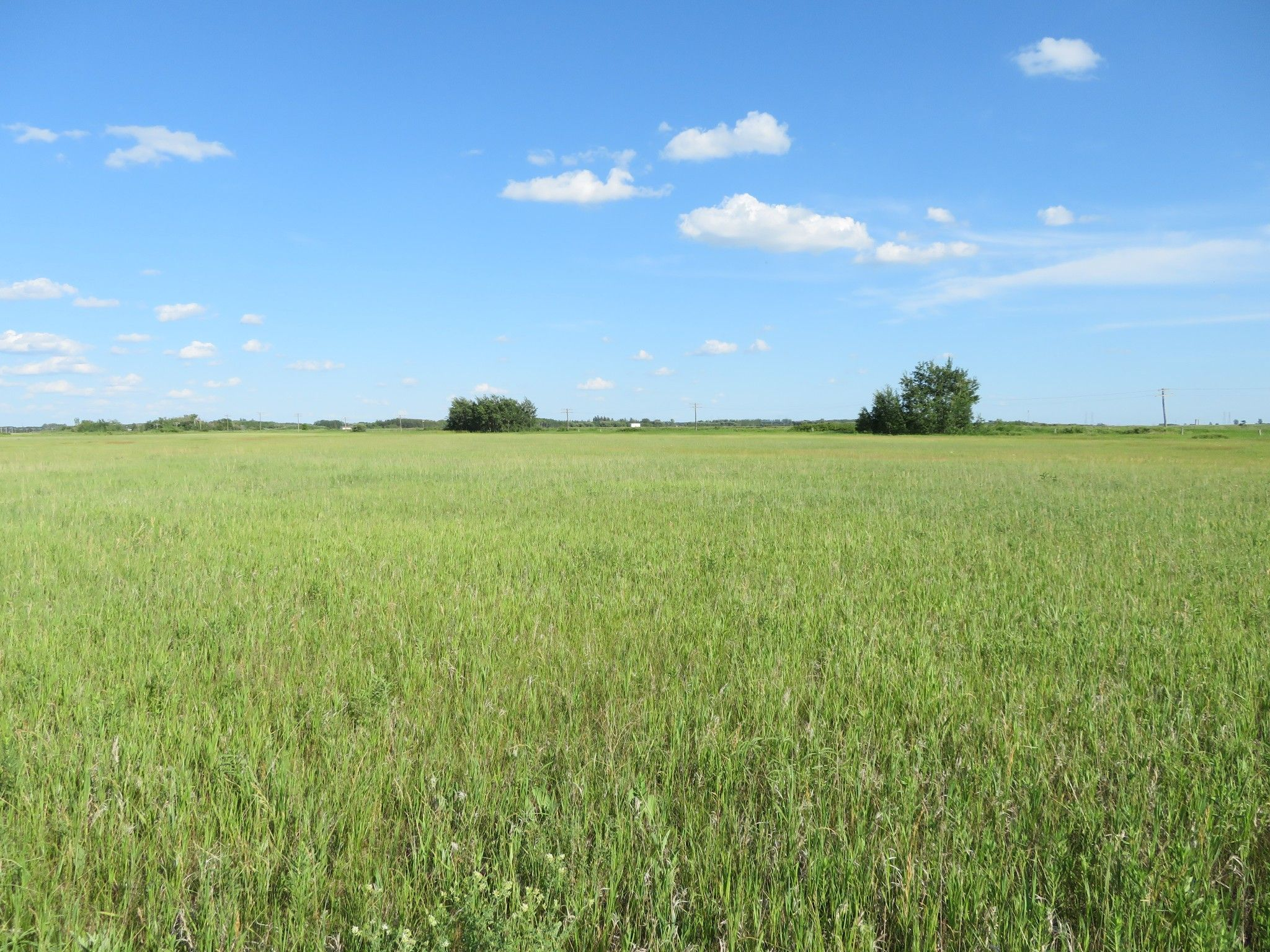 Main Photo: 0 PTH 15 Highway in Dugald: RM Springfield Vacant Land for sale (R04)  : MLS®# 202016001