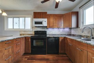 Photo 9: 4763 Rundlewood Drive NE in Calgary: Rundle Detached for sale : MLS®# A1107417