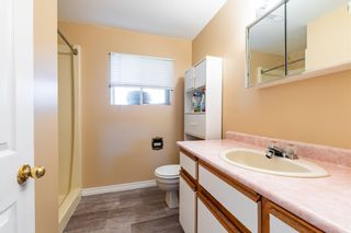 """Photo 30: 45151 ROSEBERRY Road in Chilliwack: Sardis West Vedder Rd House for sale in """"SARDIS"""" (Sardis)  : MLS®# R2594051"""