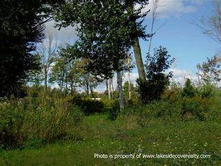 Photo 5: 41 Paradise Boulevard in Ramara: Rural Ramara Property for sale : MLS®# X3180719