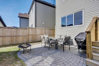 Photo 33: 188 COPPERPOND Road SE in Calgary: Copperfield House for sale : MLS®# C4182363