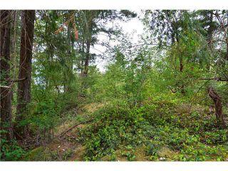 "Photo 6: LOT F REDROOFFS ROAD in Halfmoon Bay: Halfmn Bay Secret Cv Redroofs Land for sale in ""HALFMOON BAY"" (Sunshine Coast)  : MLS®# R2035709"