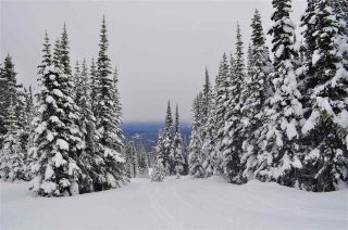 """Photo 1: 217 PRAIRIE Road in Smithers: Smithers - Rural Land for sale in """"Hudson Bay Mountain Resort"""" (Smithers And Area (Zone 54))  : MLS®# R2545464"""
