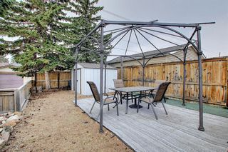 Photo 41: 367 Maitland Crescent NE in Calgary: Marlborough Park Detached for sale : MLS®# A1093291