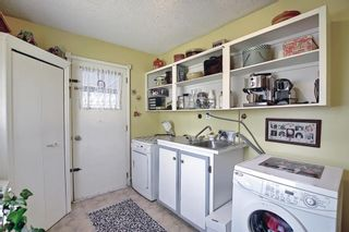 Photo 20: 116 Bowers Street NE: Airdrie Detached for sale : MLS®# A1095413