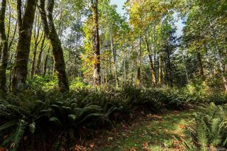 Photo 71: Lot 2 Eagles Dr in : CV Courtenay North Land for sale (Comox Valley)  : MLS®# 869395