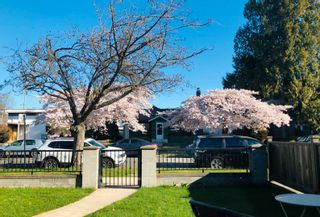 Photo 3: 772 W 68TH Avenue in Vancouver: Marpole 1/2 Duplex for sale (Vancouver West)  : MLS®# R2613293