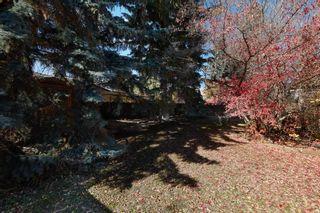 Photo 19: 8404/8406 134 Street in Edmonton: Zone 10 House for sale : MLS®# E4265246