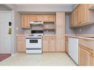"""Photo 5: 327 12101 80 Avenue in Surrey: Queen Mary Park Surrey Condo for sale in """"Surrey Town Manor"""" : MLS®# R2258938"""