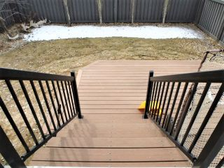 Photo 38: 20823 55 Avenue in Edmonton: Zone 58 House for sale : MLS®# E4235725