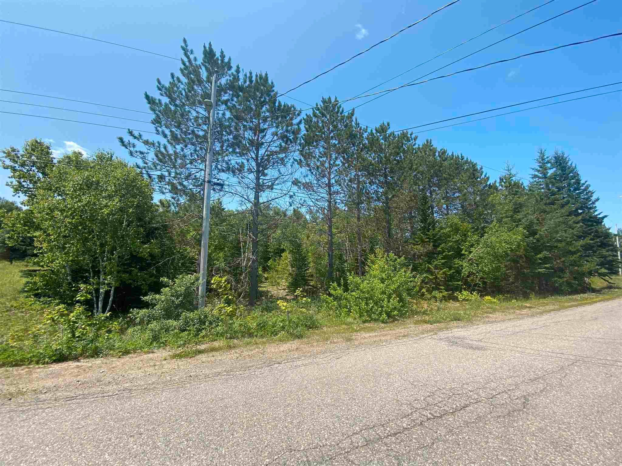 Main Photo: 253B Wildwood Drive in Howie Centre: 202-Sydney River / Coxheath Vacant Land for sale (Cape Breton)  : MLS®# 202118185