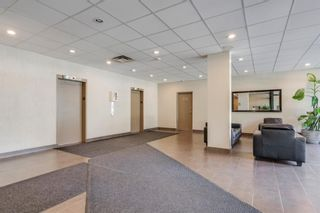 Photo 13: 508 339 13 Avenue SW in Calgary: Beltline Apartment for sale : MLS®# A1066416
