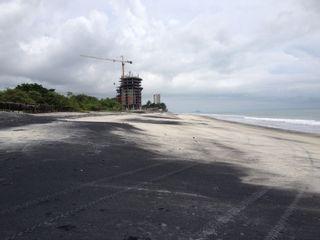 Photo 4: Royal Palm - Gorgona - New Ocean Front Development Project!