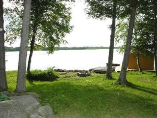 Photo 12: 17 North Taylor Road in Kawartha Lakes: Rural Eldon House (Bungalow) for sale : MLS®# X2900348