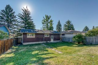 Photo 28: 236 QUEEN CHARLOTTE Way SE in Calgary: Queensland Detached for sale : MLS®# A1025137