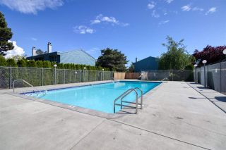"""Photo 24: 60 3031 WILLIAMS Road in Richmond: Seafair Townhouse for sale in """"EDGEWATER PARK"""" : MLS®# R2585799"""