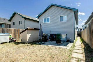 Photo 32: 168 TARACOVE ESTATE Drive NE in Calgary: Taradale Detached for sale : MLS®# A1137635