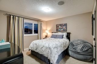Photo 33: 2786 CHINOOK WINDS Drive SW: Airdrie Detached for sale : MLS®# A1030807