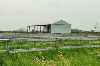 Photo 21: 55416 RGE RD 225: Rural Sturgeon County House for sale : MLS®# E4257944