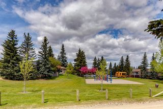 Photo 40: 84 Bermuda Way NW in Calgary: Beddington Heights Detached for sale : MLS®# A1112506
