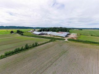 Photo 7: 27625 GRAY Avenue: Agri-Business for sale in Abbotsford: MLS®# C8038691