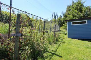 Photo 55: 2921 Cedar Drive in Sorrento: Blind Bay House for sale (South Shuswap)  : MLS®# 10232374