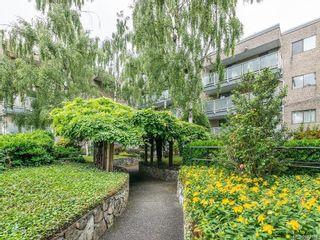 Main Photo: 201 1366 Hillside Ave in : Vi Oaklands Condo for sale (Victoria)  : MLS®# 872084