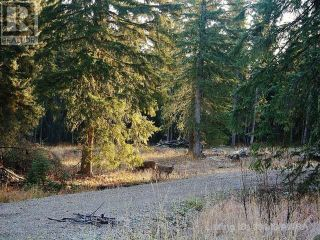 Photo 1: 53018 RANGE RD 175 in Rural Yellowhead County: Vacant Land for sale : MLS®# AW38443