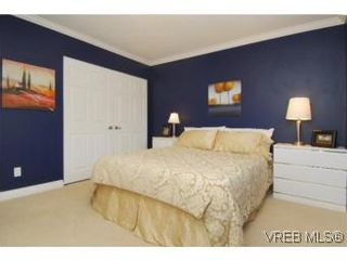 Photo 9: 4042 Hessington Place in VICTORIA: SE Arbutus House for sale (Saanich East)  : MLS®# 532222