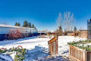 Photo 20: 4 Downie Close: Carstairs Detached for sale : MLS®# A1104304